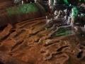 grotta-del-fico-08.jpg