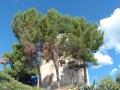 santa-maria-navarrese-05.jpg