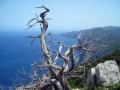trekking-baunei-sardegna-05.jpg